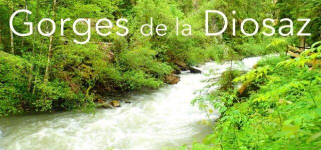 25/6   Gorges de la Diosaz