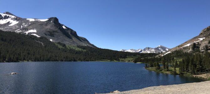 31/7  Vackra vägar till Yosemite