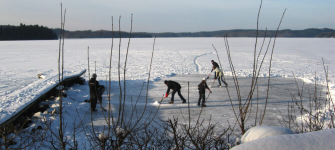 Ett vintrigt land 2010