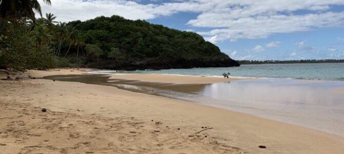 3/1 Strand längre bort, Playa Moron
