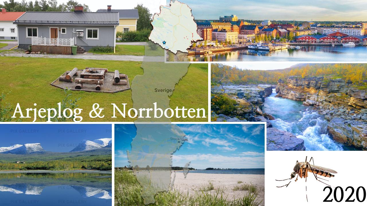 Arjeplog & Norrbotten 2020